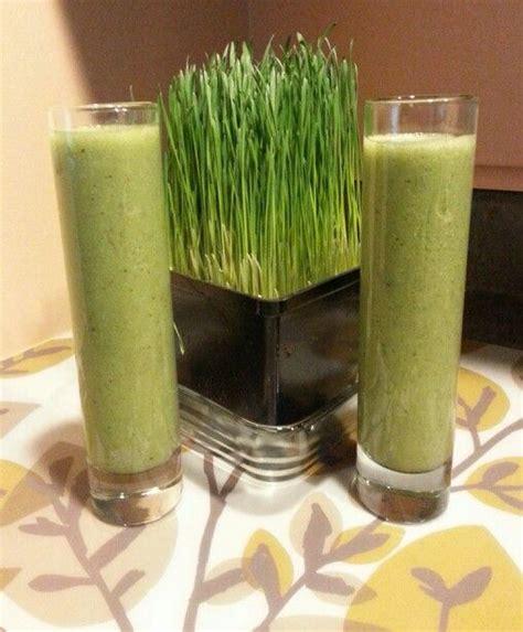 juice asparagus wheatgrass celery fresh wheat grass uploaded