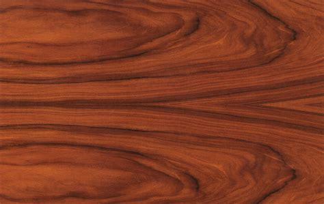 santos rosewood machaerium scleroxylon kiwari