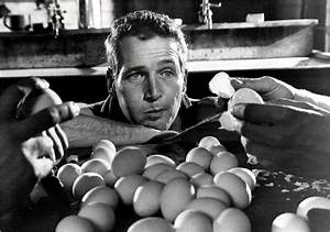 Paul Newman--Cool Hand Luke | Kinema | Pinterest