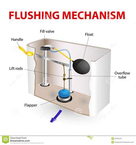 flushing mechanism flush toilet stock vector image 33200443