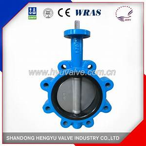 China Lug Type One Stem Butterfly Valve With Bare Shaft