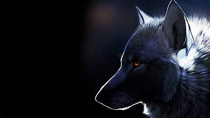 Furry Wolf Profile Wallpapers Iphone Resolution Majestic