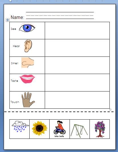 our five senses worksheets joysofspring using my 5