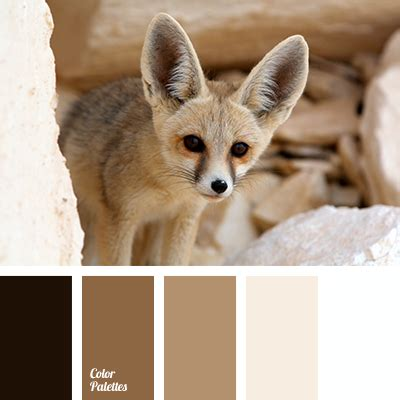 fox colors almost black beige beige and brown brown brown and