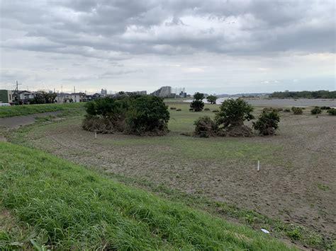 多摩川 トライアングル どこ