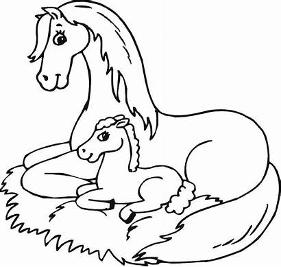 Horse Coloring Horses Pages Mom Animal Printable