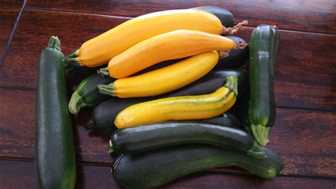 Zucchini, Fruit or Vegetable? Make 3 Meals out of this 1 ...