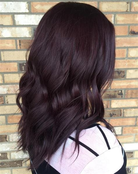 Brownish Black Hair Color by 35 Bold And Provocative Purple Hair Color Ideas
