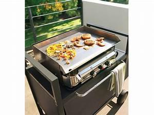 Plancha Ou Barbecue : barbecue au jardin fumoir ou plancha maison travaux ~ Melissatoandfro.com Idées de Décoration