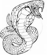 king cobra drawing clipart best cobra coloring pages for kids disney coloring pages