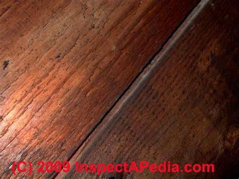 hardwood floor boards wood floor types damage diagnosis repair damaged wood floors