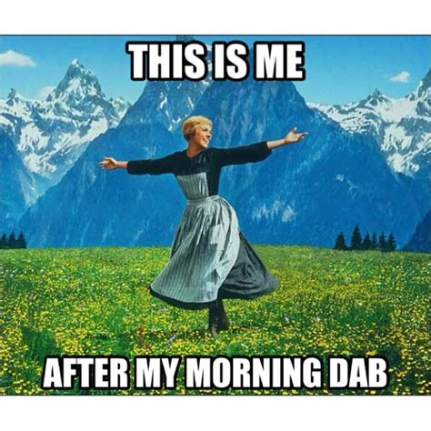 Dab Meme - this is me after my morning dab