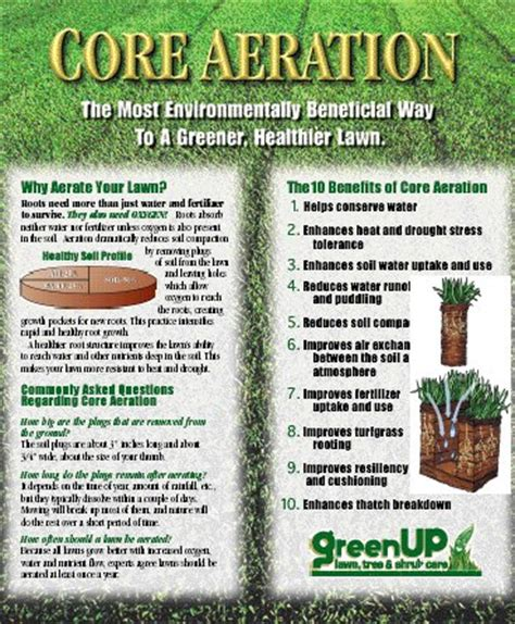 benefits of lawn aeration lars lawn service