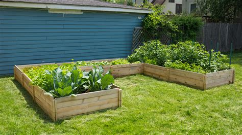 how to make a raised garden bed how to build cedar raised beds from kits without tools