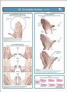 35 Best Lymphatic System Massage Images On Pinterest