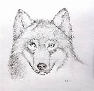 Wolf Face Pencil Drawing (Mark Crilley Video) by ...
