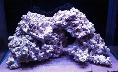 Live Rock Aquascaping by The Pros And Cons Of Aquascaping Marine Aquariums With