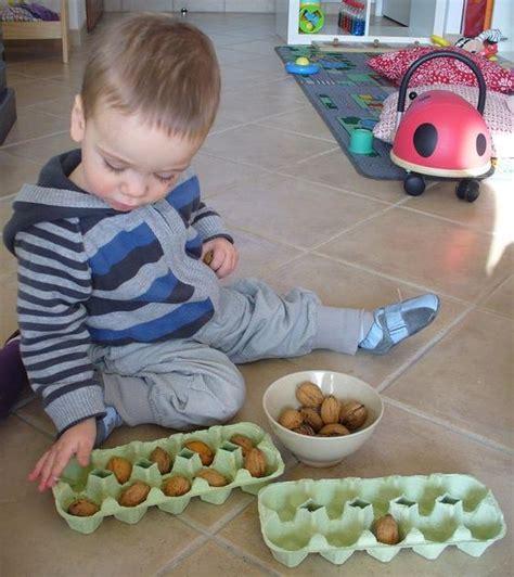 free exploration placing sorting dividing nuts