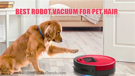 best robot vacuum cleaner for pet hair in 2019