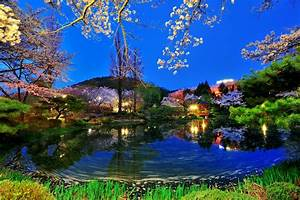 Top 5 Beautiful Places To Visit in Korea Story Tourder's