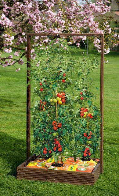pflanzkasten mit rankgitter selbstde