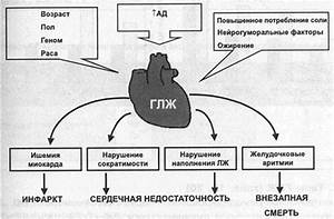 Препараты от сердца при гипертонии