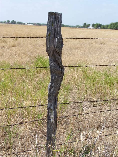 Tee Fence Post  How To Make Fence