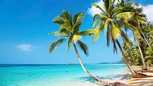 Tropical beach 4K Ultra HD wallpaper 4k-Wallpaper Net