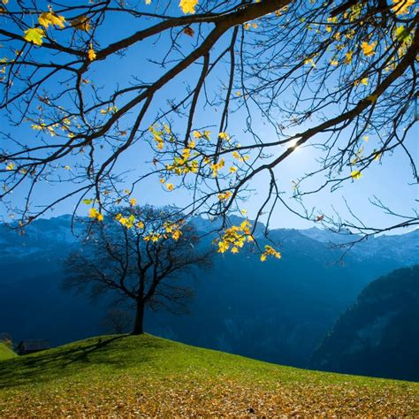 Autumn Schachental Switzerland Ipad Wallpaper Download