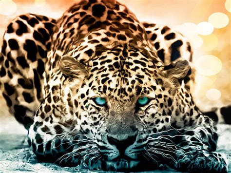 Cool 3d Animal Wallpapers - 50 amazing wildlife animal wallpapers hongkiat