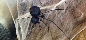 Spiderbrella: How to Turn an Old Umbrella into a Man ...