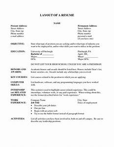 Resume layout resume cv example template for Free resume layout templates