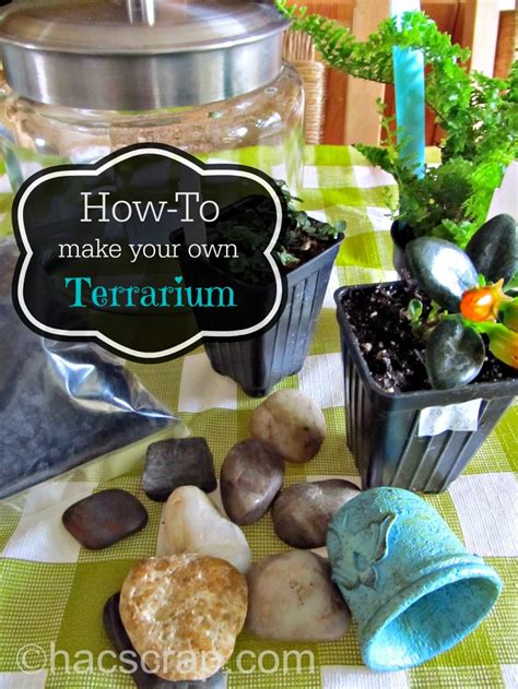 How To Make Your Own Terrarium  My Scraps
