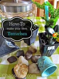make your own terrarium How To Make Your Own Terrarium | My Scraps