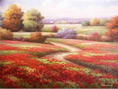 Flowers Drawings Fields Poppy Path Poppies Wallpapers