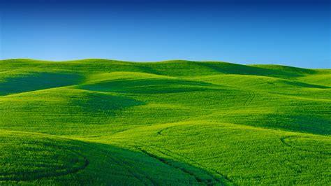 Background Greenery Wallpaper by Wallpaper Landscape Greenery Scenery Blue Sky Stock