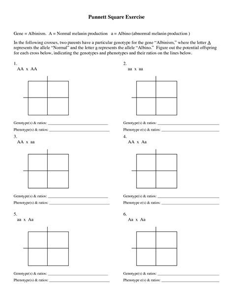 49 punnett square practice worksheet punnett square