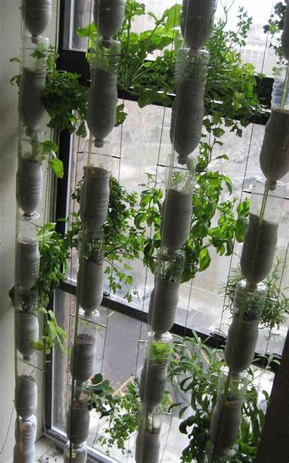 Hydroponic Diy Gardening Garden Easy