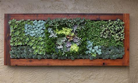 Frische Wanddekoration Mit Pflanzengreen Wall Plant Decor by W 228 Nde Gestalten Mit Vertikalen Mini G 228 Rten Aus Sukkulenten