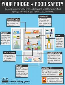 Your Fridge   Food Safety Infographic