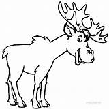 Moose Coloring Pages Printable Elk Drawing Clipart Outline Head Funny Template Animal Cool2bkids Skull Fancy Getdrawings Clipartmag Templates Clip Sketch sketch template