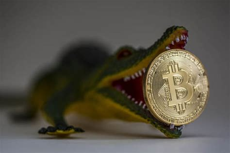 bitcoin theft  hit  billion   risks