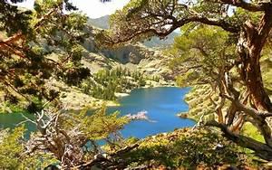 photography, , landscape, , nature, , lake, , mountains, , trees