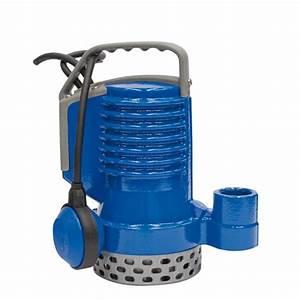 Prix Pompe De Relevage : pompe de relevage submersible dr blue par jetly pour eaux ~ Dailycaller-alerts.com Idées de Décoration
