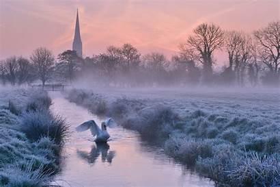 Salisbury England River Swan Frost Fog Dawn