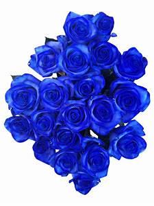 Blau De Verzichtserklärung : blaue rosen bestellen rosen online bestellen bezahlbare bezahlbare ~ Eleganceandgraceweddings.com Haus und Dekorationen