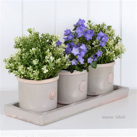 kew garden set of herb pots tray in almond royal