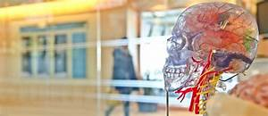 Neuroscience Resource Guide