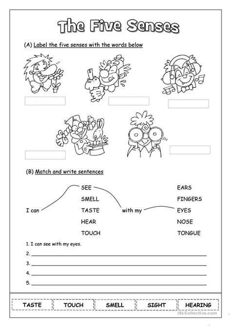 All Worksheets » 5 Senses Worksheets  Printable Worksheets Guide For Children And Parents