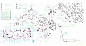 2015 Subaru Impreza Engine Oil Dipstick  Gauge Oil Level